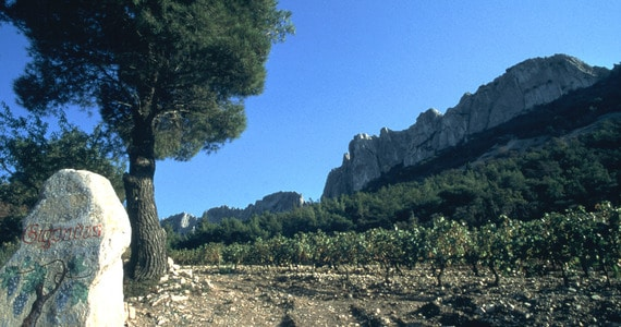 Rhone Wine Tours - L02-09_QUADRI CMJN 300 DPIDentelles_Montmirail©J_THIBHOUT_coll_CDT84