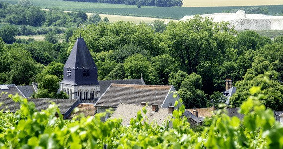 Champagne Wine Tours