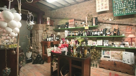Rioja wine tour - wines and olives