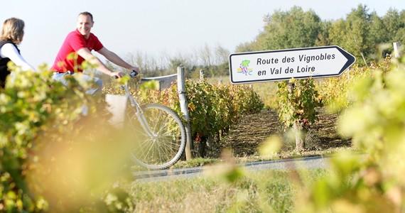 Multi region wine tours- Credits Stevens Frémont