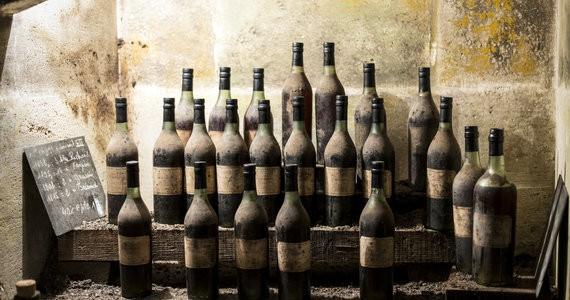 Cognac Tasting Tour - Credits Hennessy Paradis Cellar