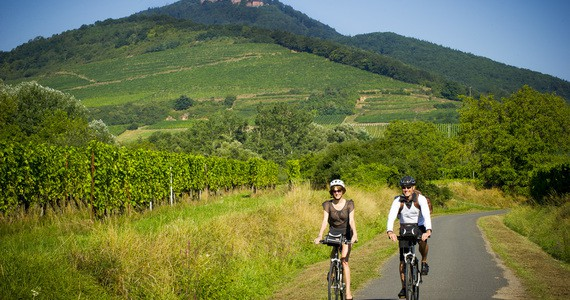 Alsace Wine Holiday- Credits Infra and ADT Alsace
