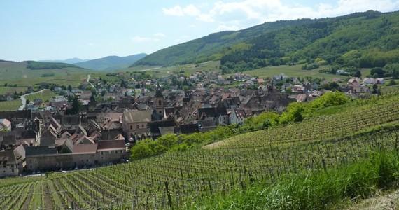 Alsace Wine Tour Riquewihr