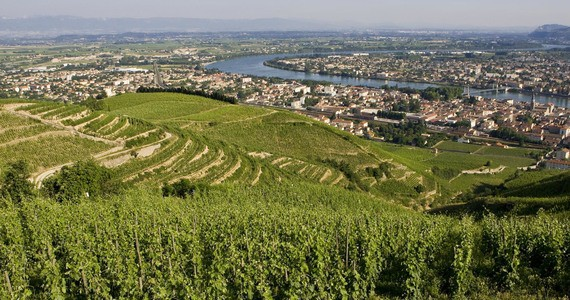 Wine Tour Booking - Credits L Pascale