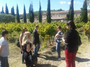 Company AGM Venue carcassonne-wine-tour-mh