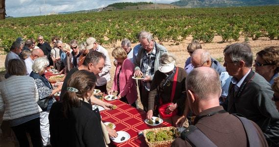 Ribera del Duero Tours - Credits Rioja Wineries Bilbainas