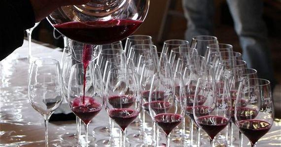 Loire Valley Trip - credits Nantes Wine Tours