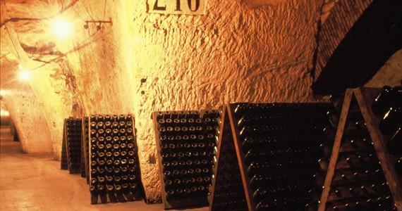 CParis Wine Tour © JF. Mallet