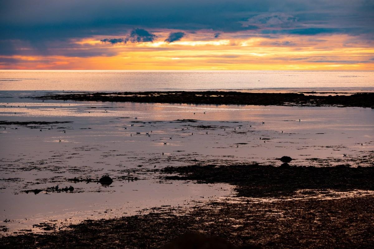 Town Guide: Stylish Cabins, Seafood, and Beautiful Coastline In Sandgerði