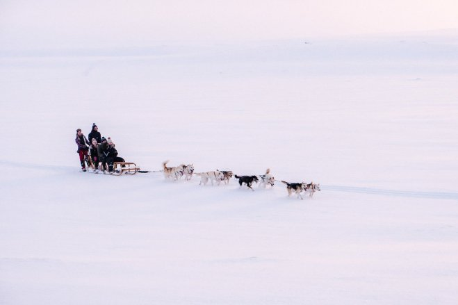 DogSledding_TimotheeLambrecq-11