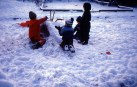 Iceland Wants To Ban Circumcision Of Young Boys