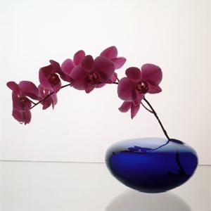 flowers_2.jpg