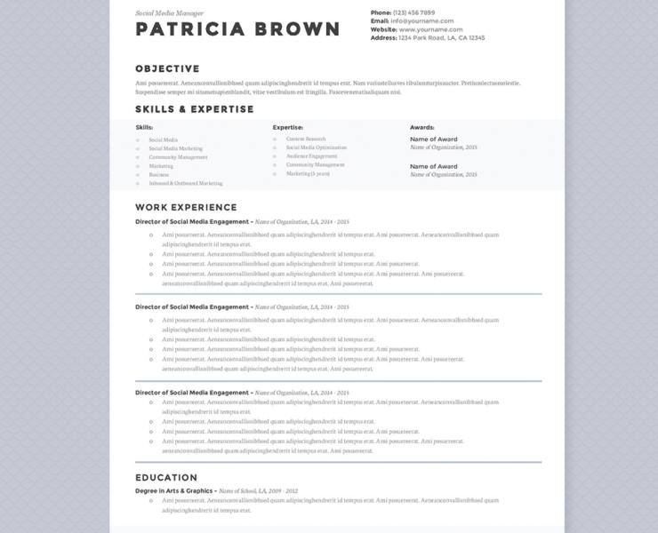 Media Manager Resume Templates Social Digital Word And
