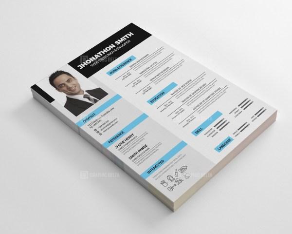 Developer Resume CV Design Template