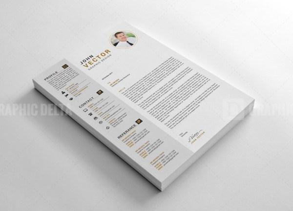 Stylish Vector Resume