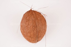 Ripe coconut photo