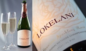 Wine Label Branding