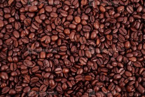 Quality coffee beans stock image