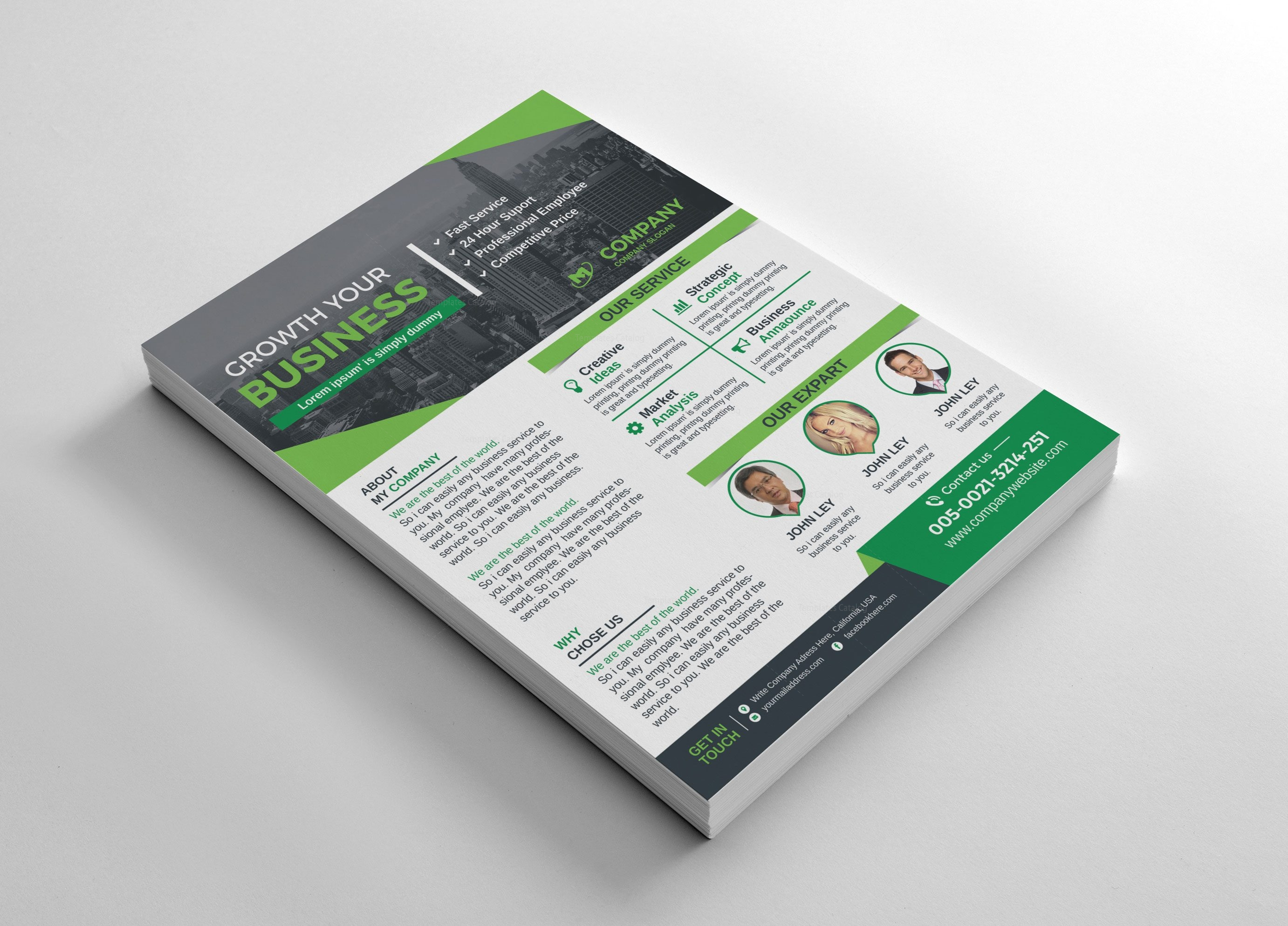Business Flyers Design Template Graphic Mega Graphic Templates Store