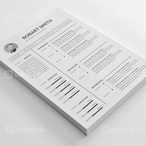 Designer Resume CV Design