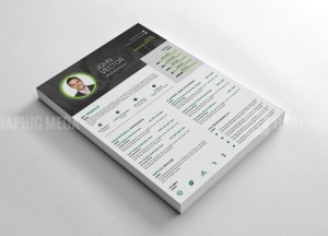 Cool Resume CV Design