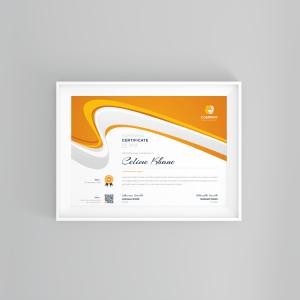 Best Seller Professional Certificate Template