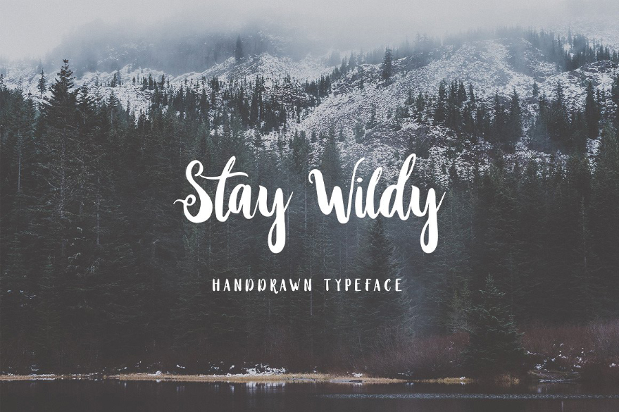 Stay Wildy Free Font