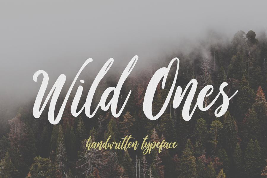 Wild Ones Free Font