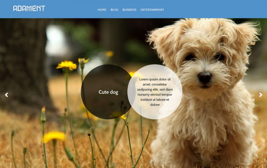 10 - Adament Free Portfolio WordPress Theme