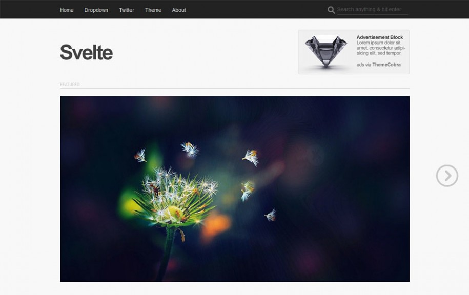 17 - Svelte Free Portfolio WordPress Theme