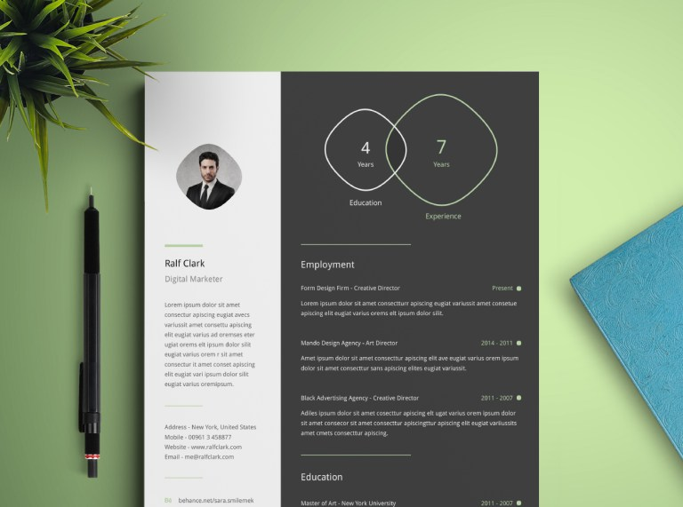19. Free Infographic Resume Template