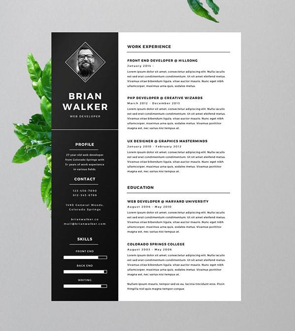 2 - Free Resume for Word, Photoshop & Illustrator
