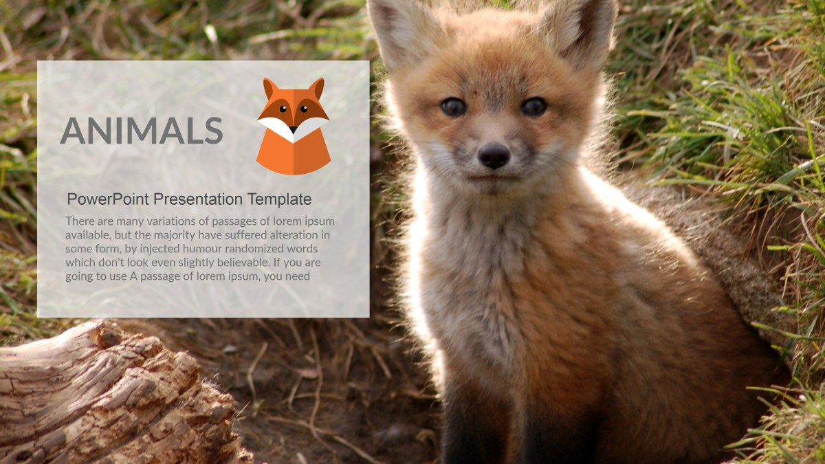 Animals PowerPoint Presentation Template 1