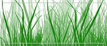 Grass, Photoshop brush