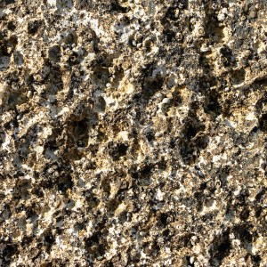 Wordless Wednesday – Download stone textures