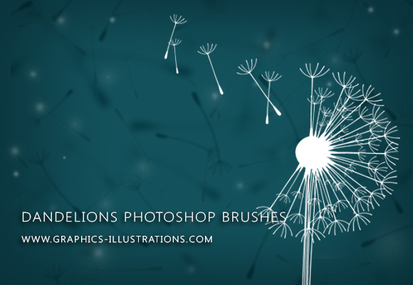 Make a Wish... With Dandelions Digital Stamps (Photoshop Brushes)