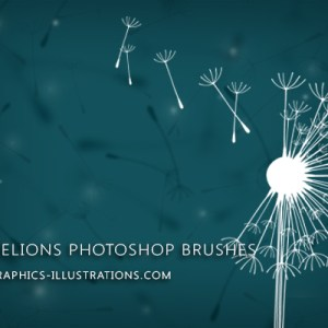 Make a Wish… With Dandelions Digital Stamps (Photoshop Brushes)