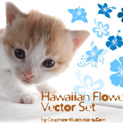 Hawaiian Flowers Vector Set (35)