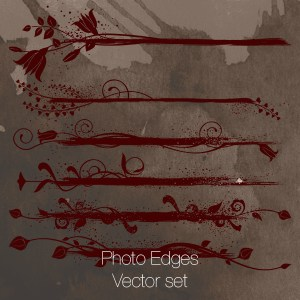 Vectors, 21 of them: Photo Edges (swirls and floral)