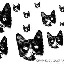 Cat Heads Photoshop Brushes (Free) and Chair Decoupage