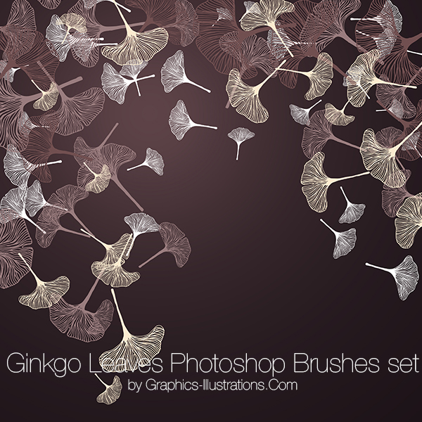 Ginkgo Leaves Photoshop brushes and transparent PNG digital stamps, Ginkgo Leaves Vector Files, Botanical Digital Stamps, Commercial Use