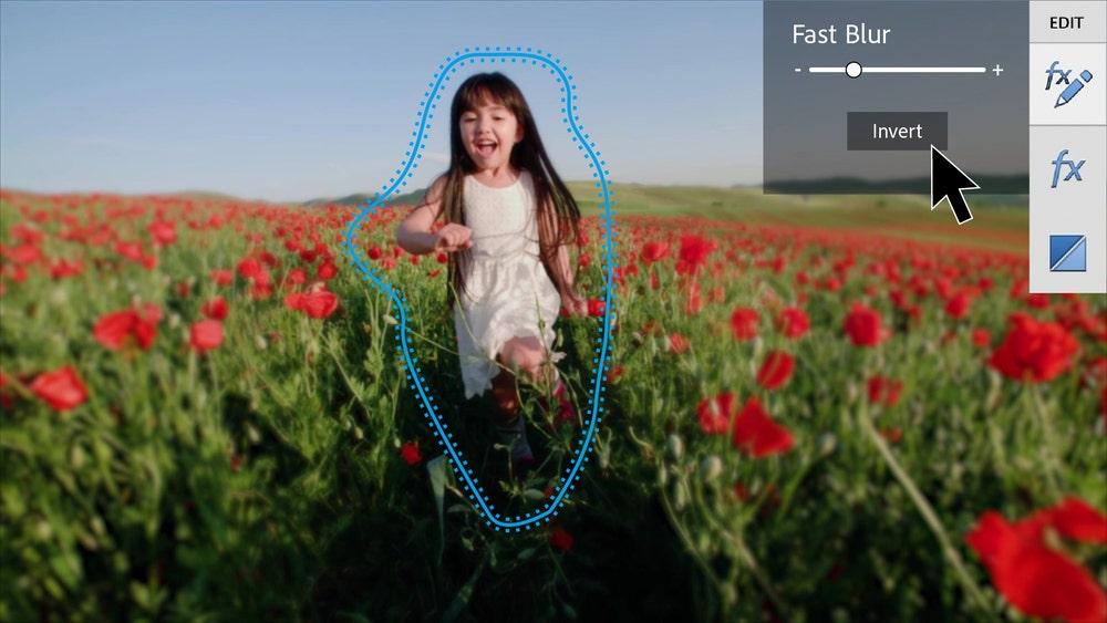 Adobe Premiere Elements 2021 Select Object