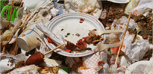 https://i2.wp.com/graphics8.nytimes.com/images/2008/05/22/health/food_533.jpg