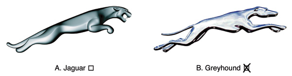 Buy Jaguar or Go Greyhound? (by Ji Li at the New York Times)