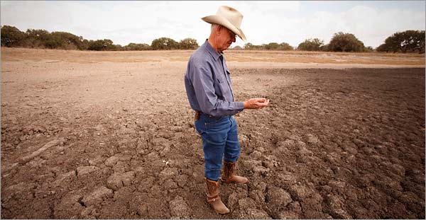 Texan farmer stands in drought-stricken land