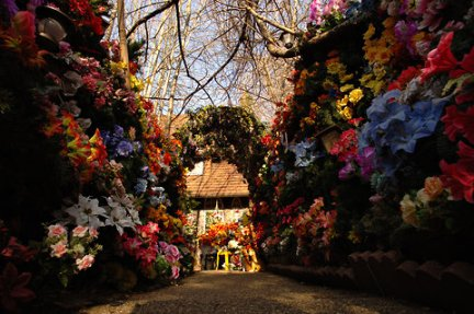 Home of Plastic Flowers