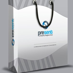 Present Stylish Shopping Bag Template