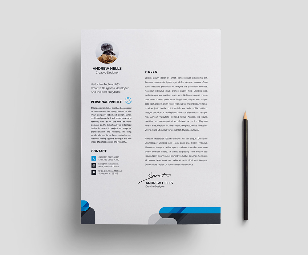 Stylish Professional Resume Template Graphic Templates