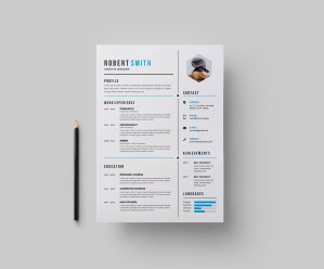 Perfect CV Design Template