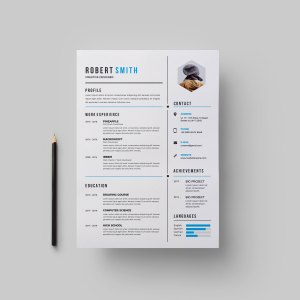 Perfect CV Design Template